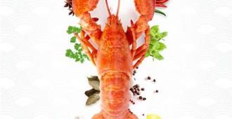 รายละเอียด Boston Lobster