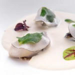 Elements_White Asparagus veloute poached oysters, mitsuba and smoked daikon