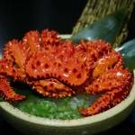 Sushi Hiro_Hokkaido Hanasaki Crab