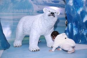 SEA LIFE_Polar Bear Cub (22)