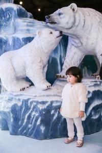SEA LIFE_Polar Bear Cub (24)