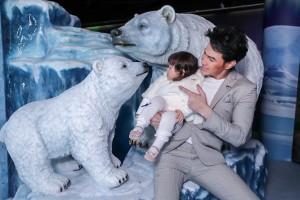 SEA LIFE_Polar Bear Cub (6)