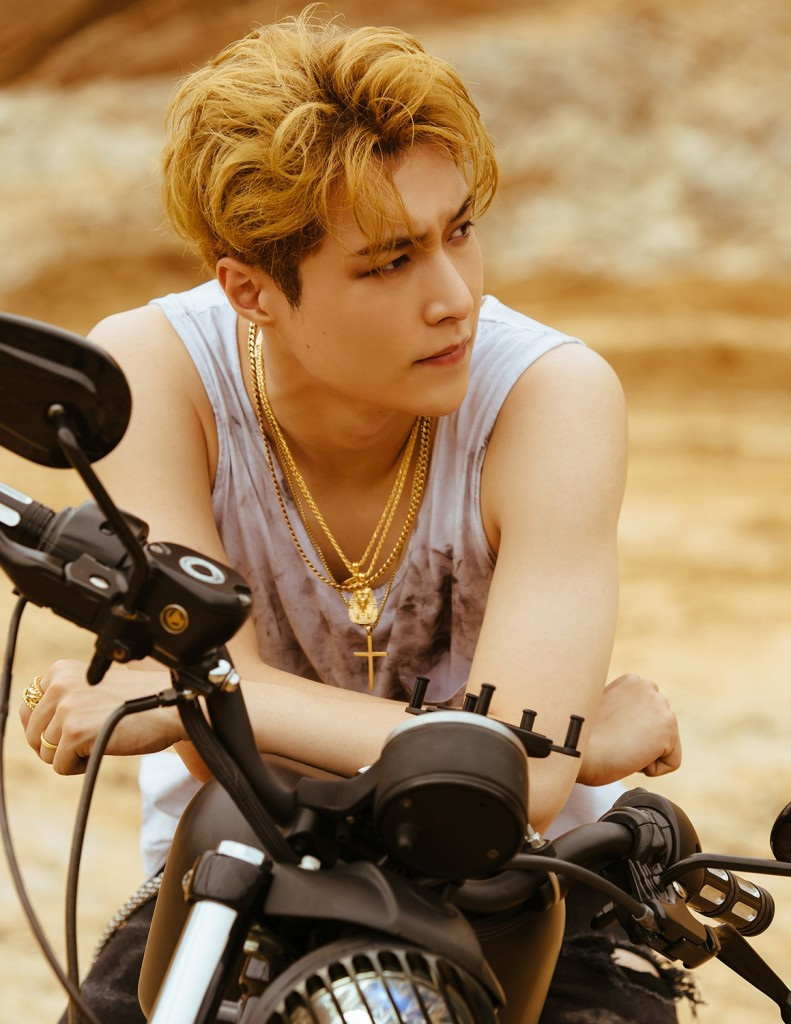 [LAY] Teaser Image