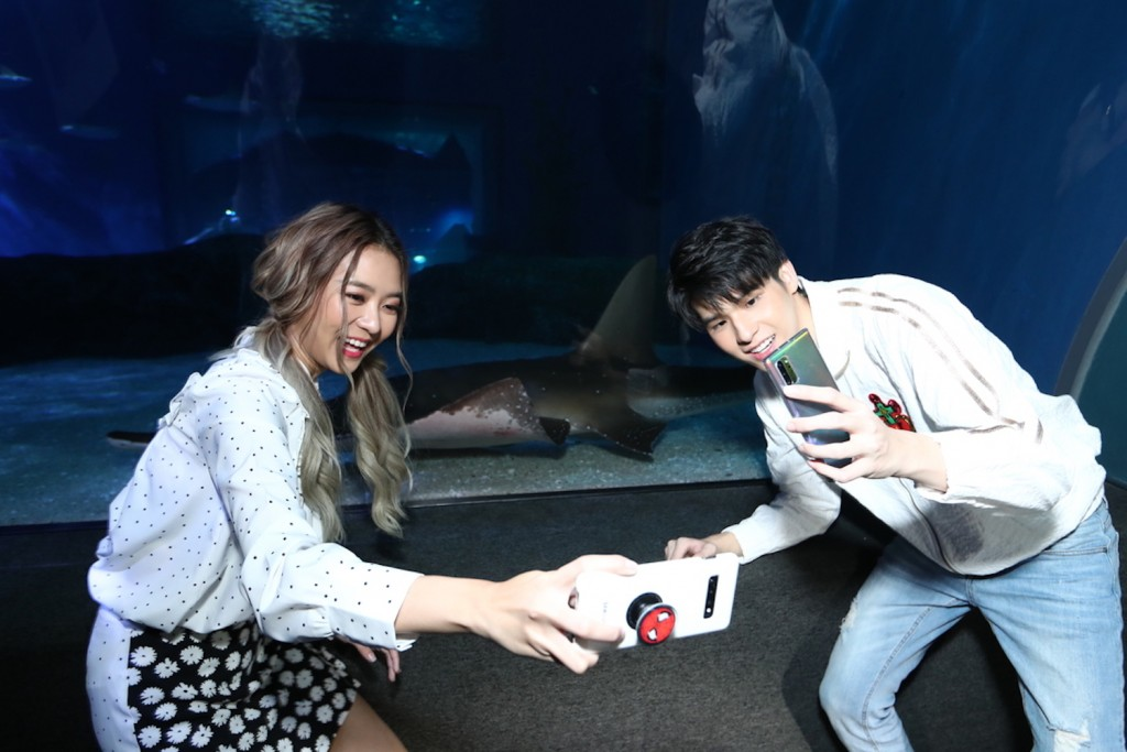 SEA LIFE Bangkok_Discover The New Shark Family4