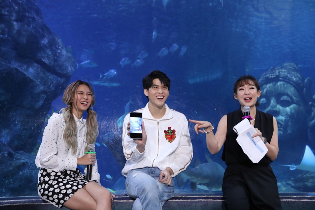 SEA LIFE Bangkok_Discover The New Shark Family8