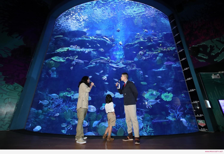 SEA LIFE_Magical Jungle Adventure (9)