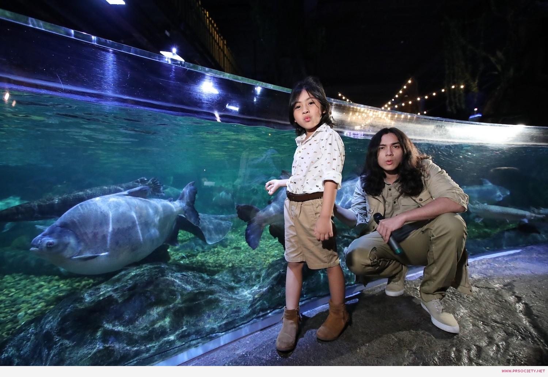 SEA LIFE_New Creature Paradise tank (2)